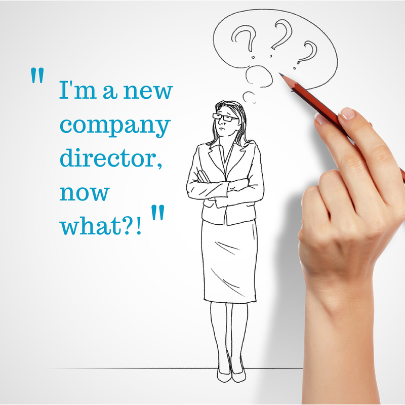 Help navigating your duties and responsibilities as a new company director